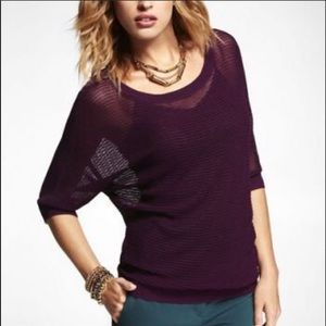EUC Express Sparkle Mesh Knit Dolman Sweater, XS